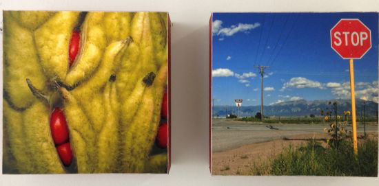 Jewels: Red Magnolia Seeds, Sign (diptych) Photo for East City Art by Eric Hope.