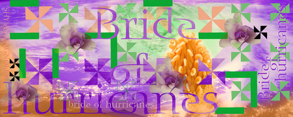 "The design for ""Bride of Hurricanes; Shy as Magnolias"""